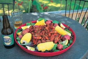 Original Size: 12.0 x 8.0. Spicy crawfish and the Northshore's own Abita beer are a happy combination and a common sight during crawfish season.